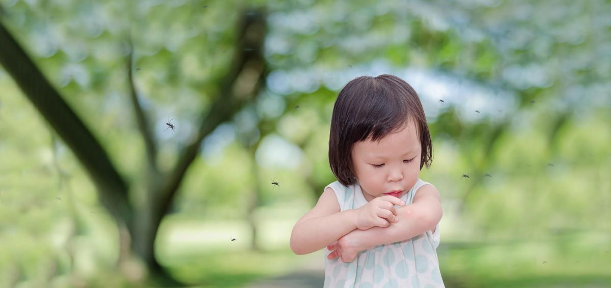 Learn to recognise the signs of these mosquito-born diseases to protect your loved ones.